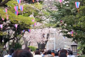 160330asukayama0