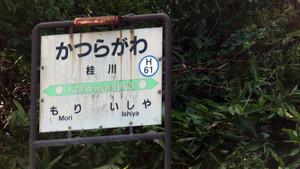 160916katsuragawa2