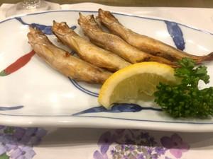 180626kakashi_shishamomeshiroo
