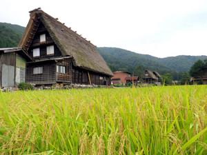 180906shirakawagou3
