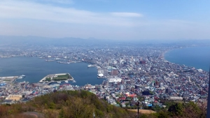 160510hakodate_city_view