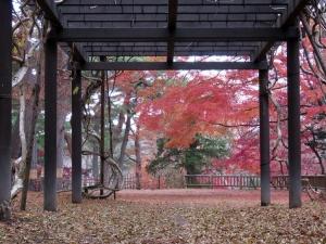181118miharashi_koen1