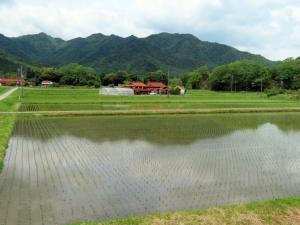 200517around_tsuwano4