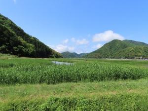 200519kinosaki_hachigorou_toshima