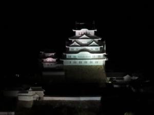 200520himeji_jou_lightup12f