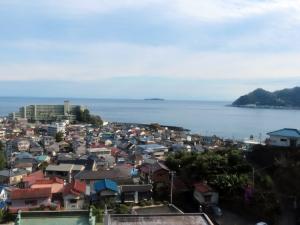 201129_izu_shasou1