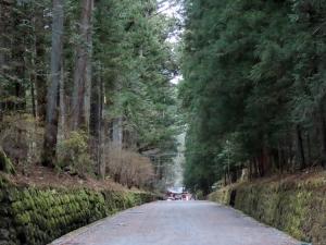 201202shimo_shindo