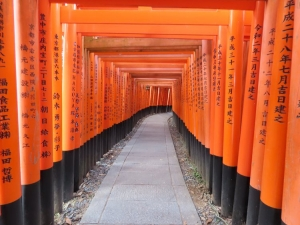 201208senbon_torii3
