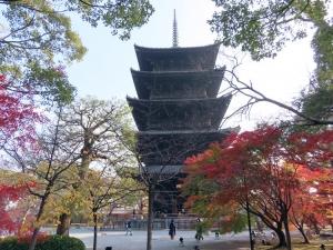 201208touji_gojuunotou4